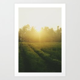 Sunrise in Ubud, Bali Art Print