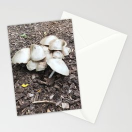 mushroom patch Stationery Cards