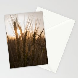 Wheat Holding the Sunset Stationery Cards