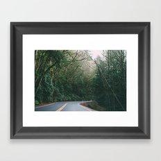 drive through the woods Framed Art Print