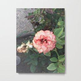 Pink Flower #2 Metal Print