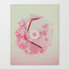 SUPERSCATTT (everyday 12.20.16) Canvas Print