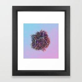 rogainometry Framed Art Print