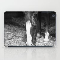 harley iPad Cases featuring Harley by Yanina May Photography