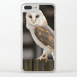 Barn Owl Clear iPhone Case