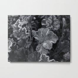 frozen nature - blue Metal Print