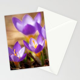 Concept flora : Wild crocus Stationery Cards