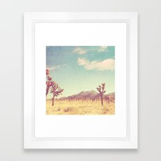 Joshua Tree photograph. desert print, No. 189 Framed Art Print