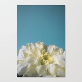 simplicity//01 Canvas Print