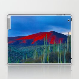 Green Cactus Field In The Desert With Red Mountains Blue Grey Sky Landscape Photography Laptop & iPad Skin