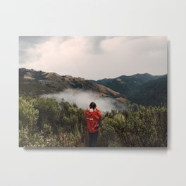 Big Sur California Metal Print