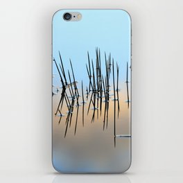 Pinchos iPhone Skin