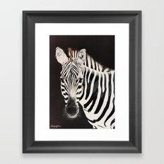 Taylor's Zebra   Painting Framed Art Print