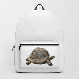 Giant tortoise, tortoise Backpack