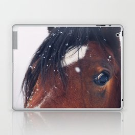 Stormy Laptop & iPad Skin