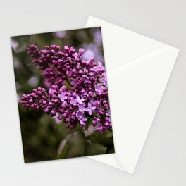 Lilac Beginnings Stationery Cards