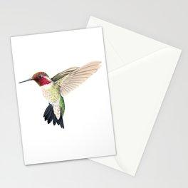Anna's Hummingbird in Flight Stationery Cards