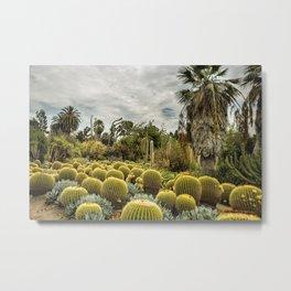 Succulents at Huntington Garden No. 1 Metal Print