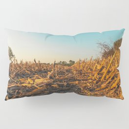 Corn field at sunset in the countryside of Lomellina Pillow Sham