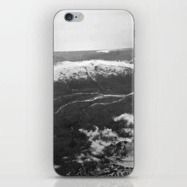 Glacier Buddies iPhone Skin