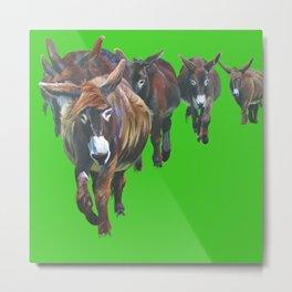 Pitou Donkeys Metal Print