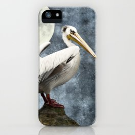 Pelican Night iPhone Case