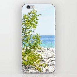 Boulder Beach. iPhone Skin