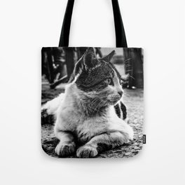 Istanbul Cats Tote Bag