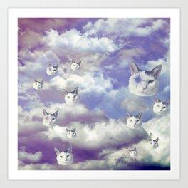 Sky Shemp Art Print