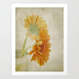Gerbera Art Print