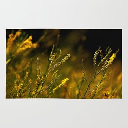 Amber Fiels of Gold... Rug