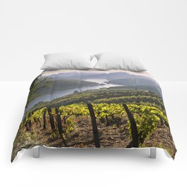 Vineyards along the Douro Valley, Portugal Comforters