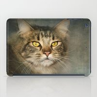 maine iPad Cases featuring Maine Coon by Pauline Fowler ( Polly470 )