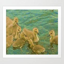Bobbing Baby Geese Art Print