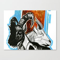ibex and mountain goat Canvas Print