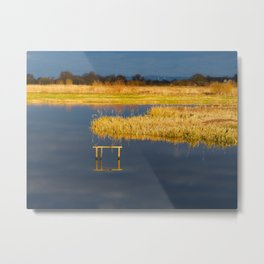 Reflections at Wheldrake Metal Print