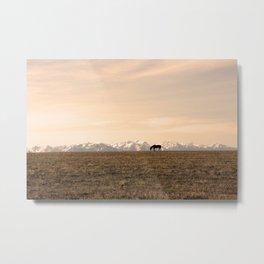 Montana Landscapes Metal Print