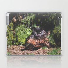 The king of the cats Laptop & iPad Skin
