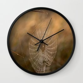 Cobweb with spider Wall Clock