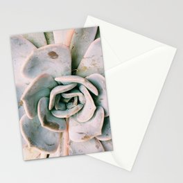Succulent Petals Stationery Cards