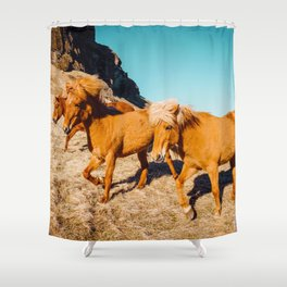 Wild Shaggy Ponies Shower Curtain