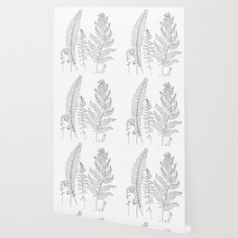 Minimal Line Art Fern Leaves Wallpaper