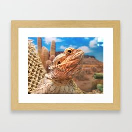 Bearded Dragon Framed Art Print