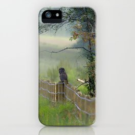 Great Grey Owl iii iPhone Case