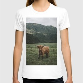 Franz Josef Glacier, wild cattle with a view on the mountains - New Zealand T-shirt