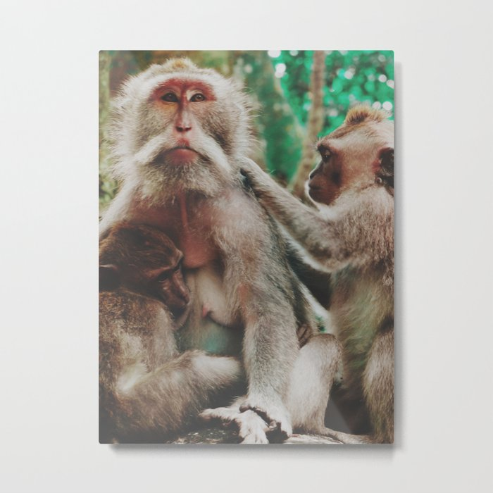 Monkey family Metal Print