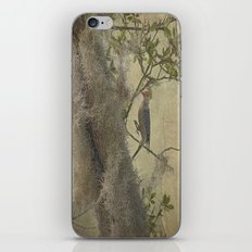 In The Moss iPhone & iPod Skin