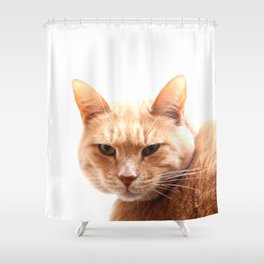 Red cat watching Shower Curtain