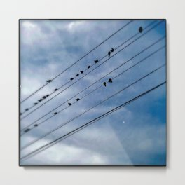 On the Wire Metal Print
