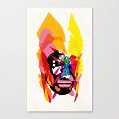 271114_b Canvas Print